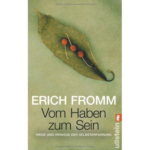 Erich Fromm - Vom Haben zum Sein: Wege und Irrwege der Selbsterfahrung - Preis vom 24.02.2021 06:00:20 h