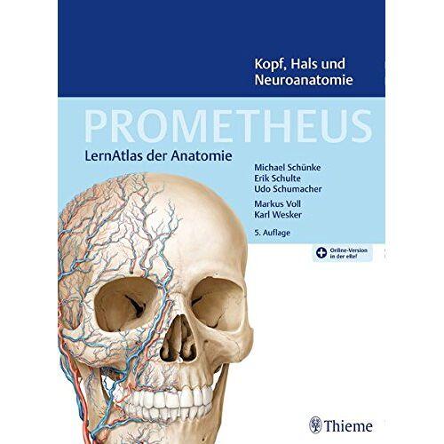 Erik Schulte - PROMETHEUS Kopf, Hals und Neuroanatomie: LernAtlas Anatomie - Preis vom 28.03.2020 05:56:53 h