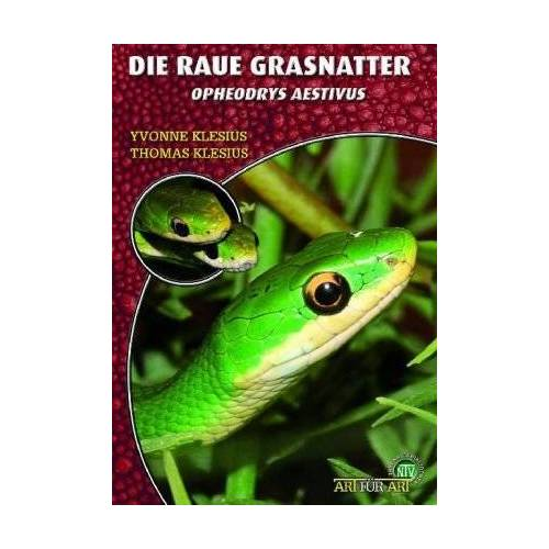 Yvonne Klesius - Art für Art Nattern 19. Die Raue Grasnatter: Opheodrys aestivus - Preis vom 16.01.2021 06:04:45 h