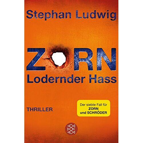 Stephan Ludwig - Zorn 7 - Lodernder Hass: Thriller - Preis vom 21.04.2021 04:48:01 h