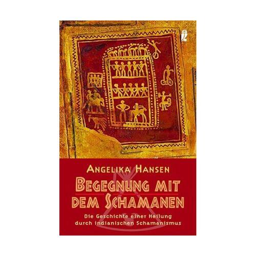 Hansen Begegnung mit dem Schamanen: Die Geschichte einer Heilung durch indianischen Schamanismus - Preis vom 10.05.2021 04:48:42 h