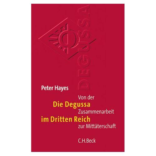 Peter Hayes - Die Degussa im Dritten Reich: Von der Zusammenarbeit zur Mittäterschaft - Preis vom 04.10.2020 04:46:22 h