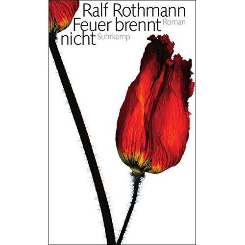 Ralf Rothmann - Feuer brennt nicht: Roman - Preis vom 15.04.2021 04:51:42 h