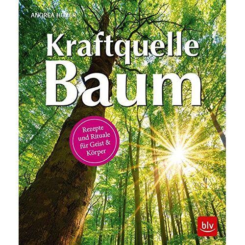Andrea Huber - Kraftquelle Baum: Rezepte und Rituale für Geist & Körper - Preis vom 18.09.2019 05:33:40 h