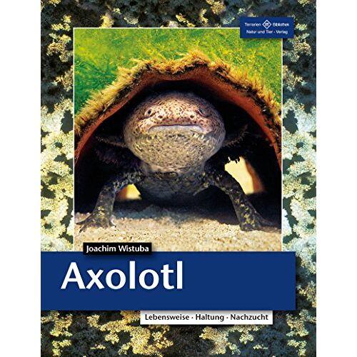 Joachim Wistuba - Axolotl: Lebensweise, Haltung, Nachzucht (Terrarien-Bibliothek) - Preis vom 03.09.2020 04:54:11 h