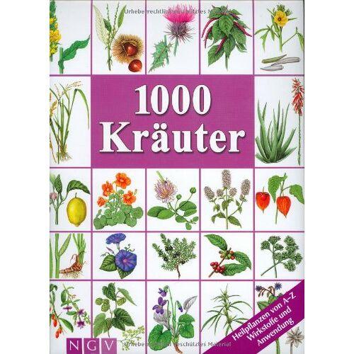 Kothe, Hans W. - 1000 Kräuter - Preis vom 03.03.2021 05:50:10 h