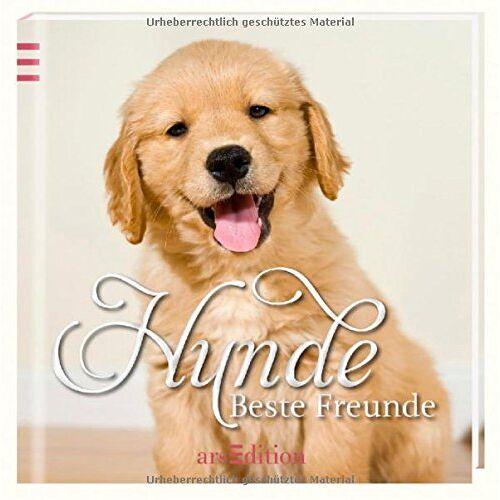 kein Autor - Hunde: Beste Freunde - Preis vom 11.05.2021 04:49:30 h