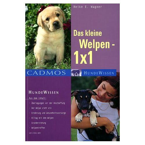 Wagner, Heike E. - Das kleine Welpen 1 x 1 - Preis vom 17.04.2021 04:51:59 h
