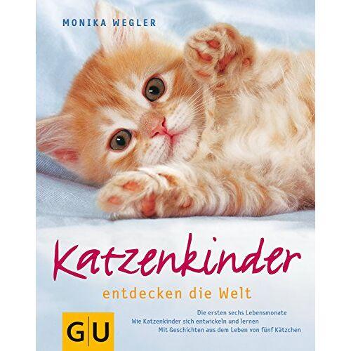 Monika Wegler - Katzenkinder (Hunde & Katzen) - Preis vom 08.04.2021 04:50:19 h