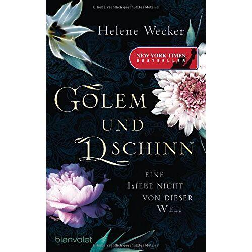 Helene Wecker - Golem und Dschinn - Eine Liebe nicht von dieser Welt: Roman - Preis vom 21.10.2020 04:49:09 h