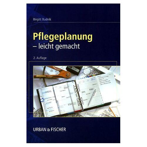 Birgitt Budnik - Pflegeplanung leicht gemacht. - Preis vom 05.09.2020 04:49:05 h