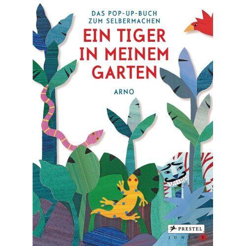 Arno - Ein Tiger in meinem Garten: Das Pop-up-Buch zum Selbermachen - Preis vom 03.09.2020 04:54:11 h
