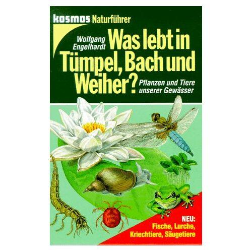 Wolfgang Engelhardt - Was lebt in Tümpel, Bach und Weiher? - Preis vom 12.10.2019 05:03:21 h
