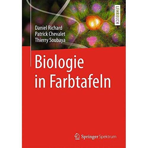 Daniel Richard - Biologie in Farbtafeln - Preis vom 20.10.2020 04:55:35 h
