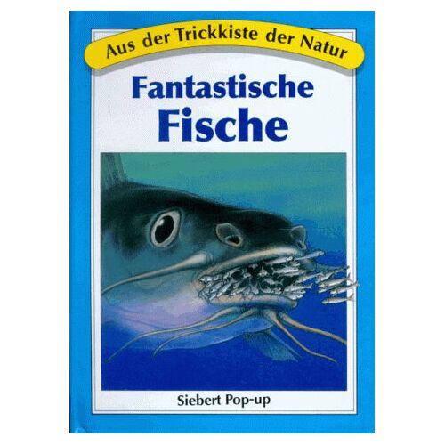 - Aus der Trickkiste der Natur. Fantastische Fische. ( Siebert Pop-up) - Preis vom 12.05.2021 04:50:50 h