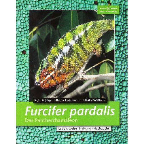 Rolf Müller - Furcifer pardalis. Das Pantherchamäleon - Preis vom 20.10.2020 04:55:35 h