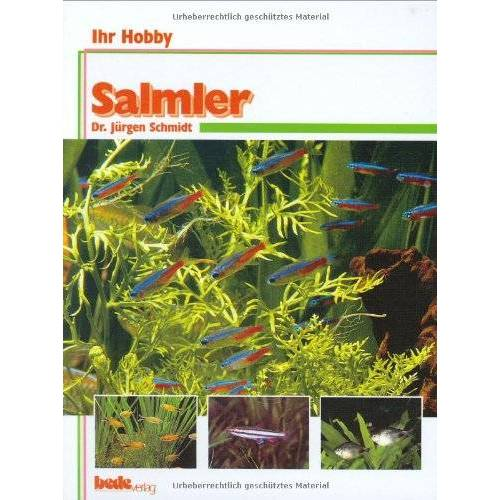 Dr. Jürgen Schmidt - Salmler, Ihr Hobby - Preis vom 12.04.2021 04:50:28 h