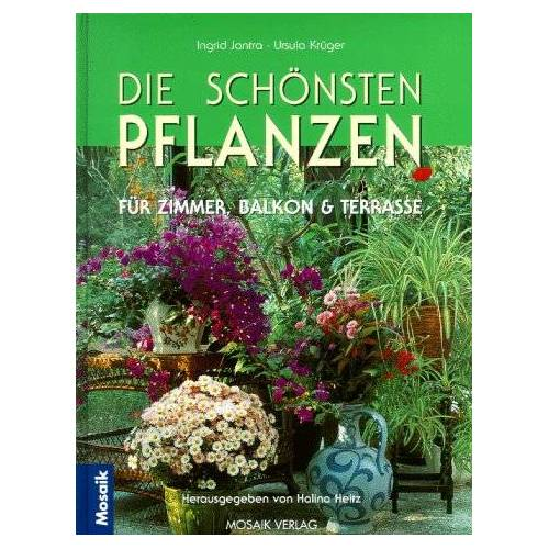 Ingrid Jantra - Die schönsten Pflanzen für ein grünes Zuhause - Preis vom 20.10.2020 04:55:35 h