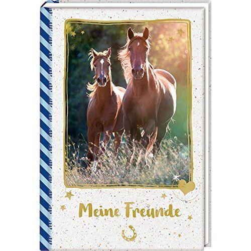- Freundebuch – Pferdefreunde – Meine Freunde: Galoppierende Pferde - Preis vom 24.01.2020 06:02:04 h