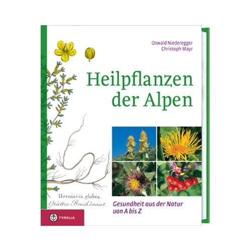 Gustav Niederegger - Heilpflanzen der Alpen: Gesundheit aus der Natur von A - Z - Preis vom 21.01.2021 06:07:38 h