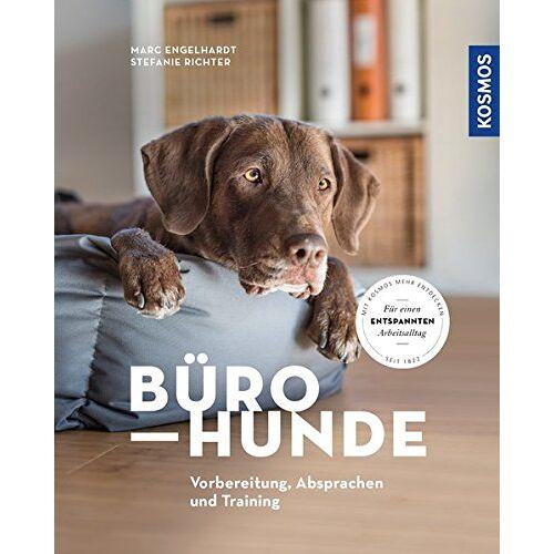 Marc Bürohunde: Vorbereitung, Absprachen und Training - Preis vom 17.04.2021 04:51:59 h