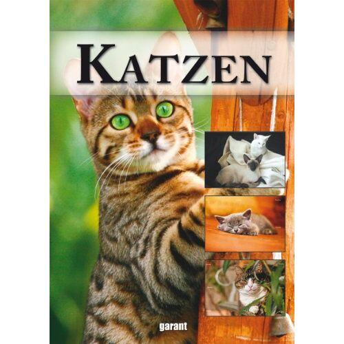 - Katzen: VON ABESSINIERKATZE BIS WALDKATZE - Preis vom 17.04.2021 04:51:59 h