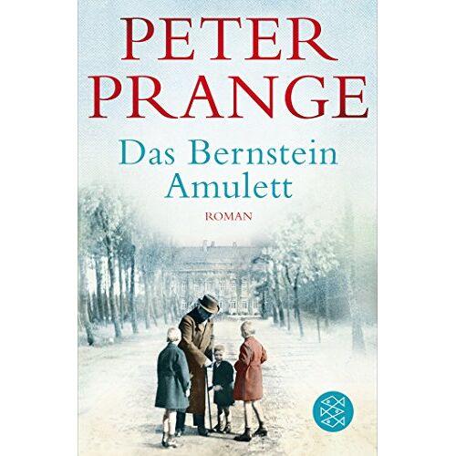 Peter Prange - Das Bernstein-Amulett: Roman - Preis vom 04.09.2020 04:54:27 h