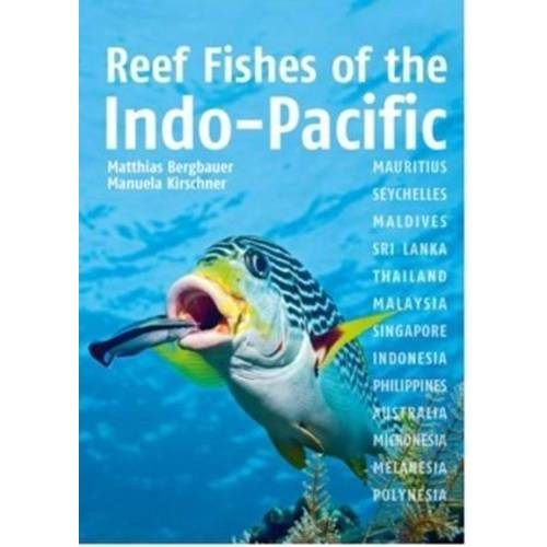 Matthias Bergbauer - Bergbauer, M: Reef Fishes of the Indo-Pacific - Preis vom 15.04.2021 04:51:42 h