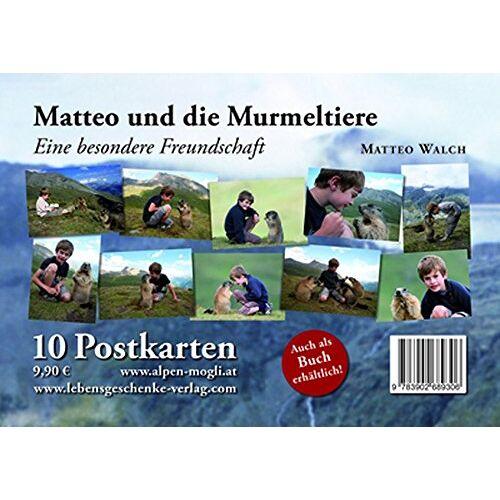 - Postkartenset Matteo & die Murmeltiere - Preis vom 21.11.2019 05:59:20 h