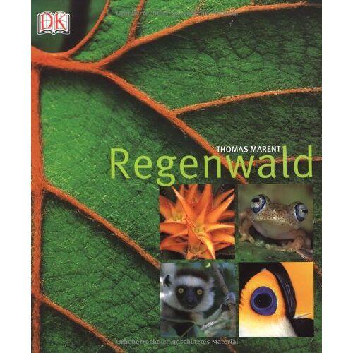 Ben Morgan - Regenwald - Preis vom 16.04.2021 04:54:32 h