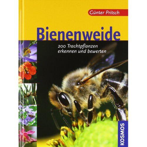 Günter Pritsch - Bienenweide: 200 Trachtpflanzen erkennen und bewerten - Preis vom 20.10.2020 04:55:35 h