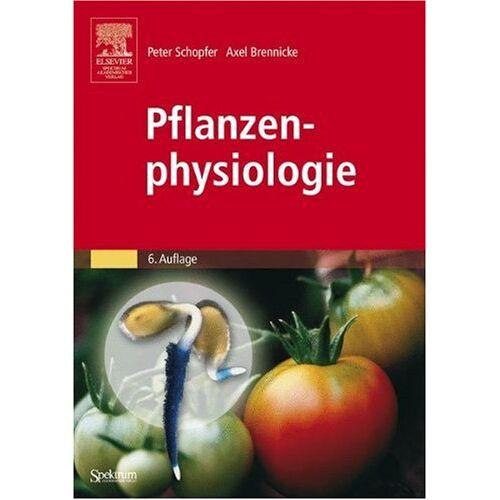 Peter Schopfer - Pflanzenphysiologie - Preis vom 03.09.2020 04:54:11 h