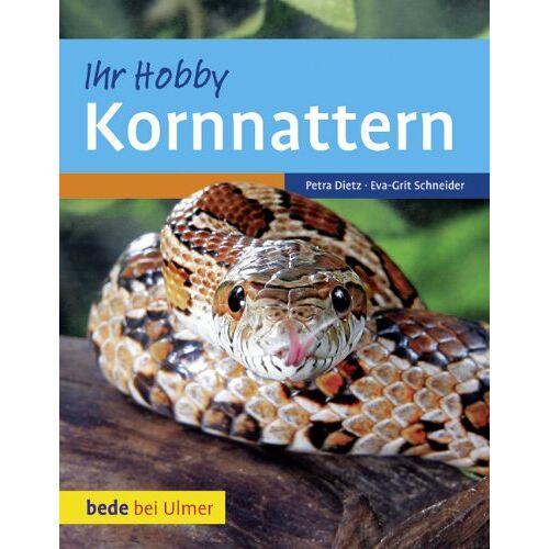 Dietz Kornnattern - Preis vom 06.09.2020 04:54:28 h