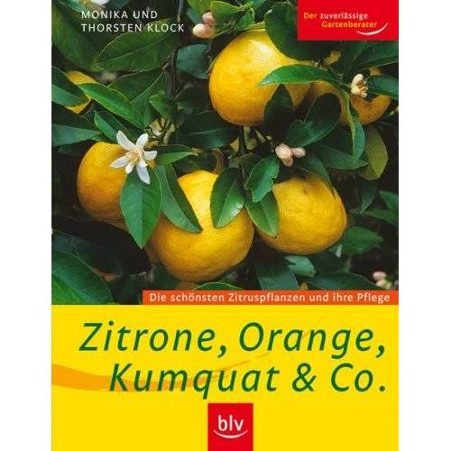 Monika Klock - Zitrone, Orange, Kumquat & Co: Die schönsten Zitruspflanzen und ihre Pflege - Preis vom 16.04.2021 04:54:32 h