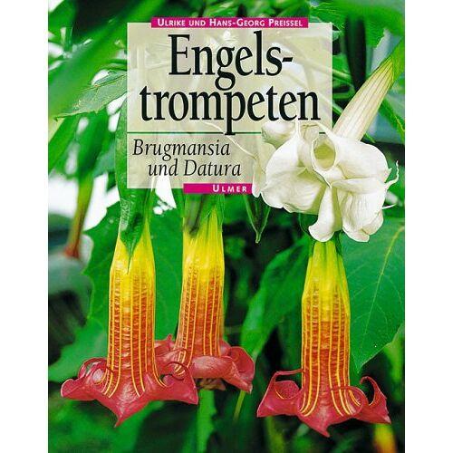 Ulrike Preißel - Engelstrompeten. Brugmansia und Datura - Preis vom 10.05.2021 04:48:42 h