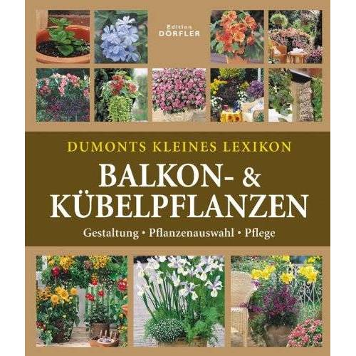 Wota Wehmayer - Dumonts kleines Lexikon Balkon- & Kübelpflanzen: Gestaltung-Bepflanzung-Pflege - Preis vom 12.05.2021 04:50:50 h