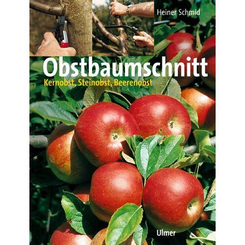 Heiner Schmid - Obstbaumschnitt. Kernobst, Steinobst, Beerenobst - Preis vom 21.10.2020 04:49:09 h