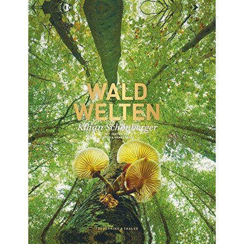 Kilian Schönberger - Waldwelten - Preis vom 21.10.2020 04:49:09 h