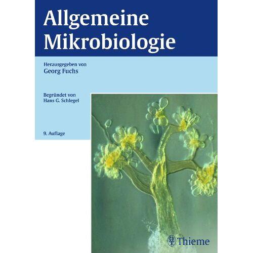 Georg Fuchs - Allgemeine Mikrobiologie - Preis vom 15.05.2021 04:43:31 h