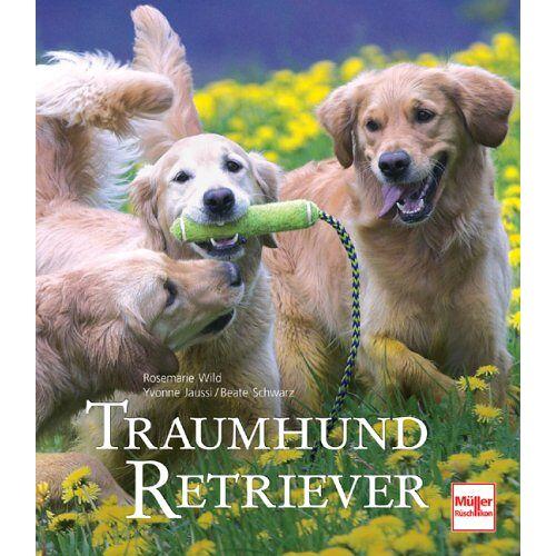 Rosemarie Wild - Traumhund Retriever - Preis vom 09.05.2021 04:52:39 h