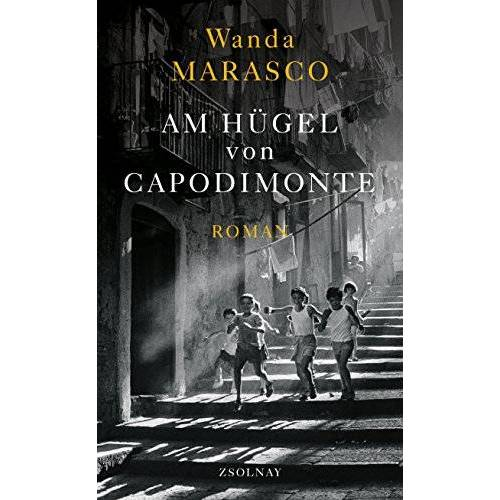 Wanda Marasco - Am Hügel von Capodimonte: Roman - Preis vom 21.10.2020 04:49:09 h