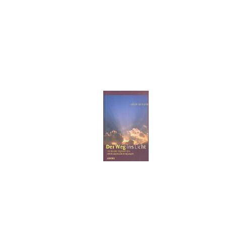 Leon Burdin - Der Weg ins Licht - Preis vom 20.10.2020 04:55:35 h