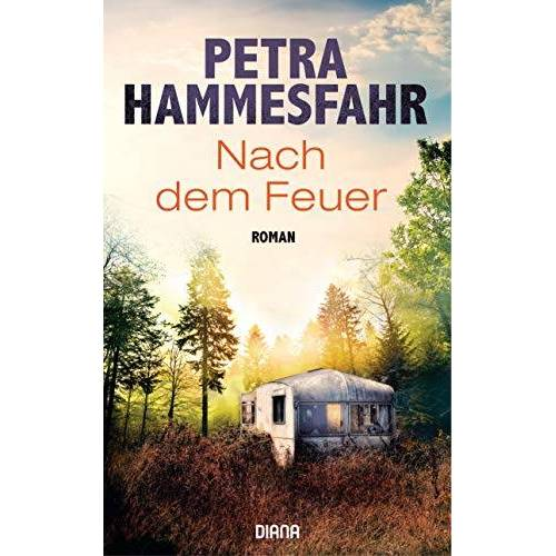 Petra Hammesfahr - Nach dem Feuer: Roman - Preis vom 15.05.2021 04:43:31 h