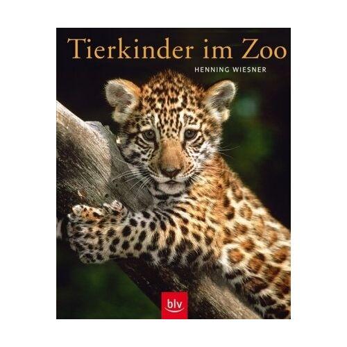 Henning Wiesner - Tierkinder im Zoo - Preis vom 21.04.2021 04:48:01 h