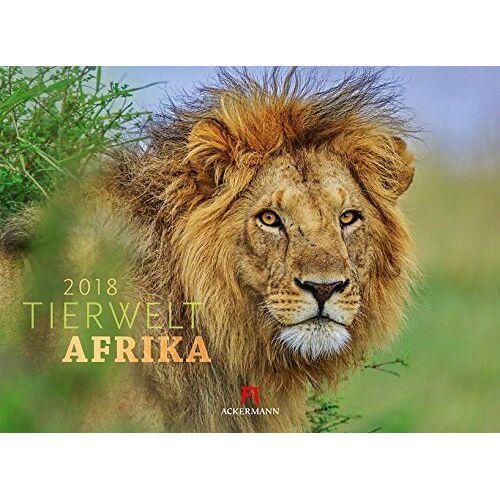 Ackermann Kunstverlag - Tierwelt Afrika 2018 (Tierwelten) - Preis vom 09.04.2020 04:56:59 h