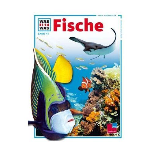 Torsten Fischer - Was ist was, Band 041: Fische - Preis vom 23.01.2021 06:00:26 h