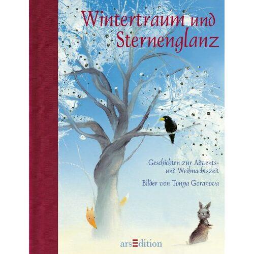 - Wintertraum und Sternenglanz (Medi) - Preis vom 16.05.2021 04:43:40 h