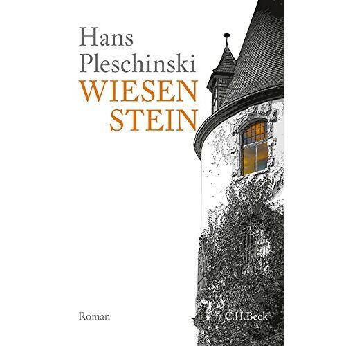 Hans Pleschinski - Wiesenstein: Roman - Preis vom 06.05.2021 04:54:26 h