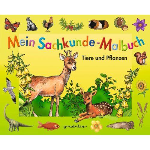 - Mein Sachkunde-Malbuch Tiere und Pflanzen (grün) - Preis vom 04.10.2020 04:46:22 h