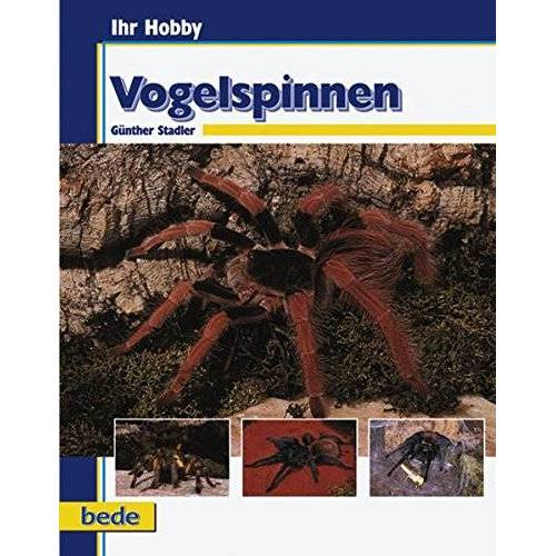 Günter Stadler - Vogelspinnen, Ihr Hobby - Preis vom 16.05.2021 04:43:40 h